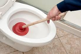 deboucher-la-toilette