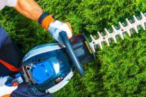 Entretien du jardin : à quoi sert un coupe-bordure ?