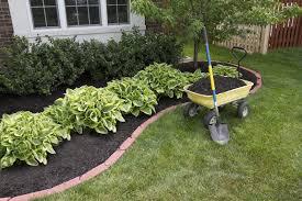 Pailler : un geste de jardinage utile